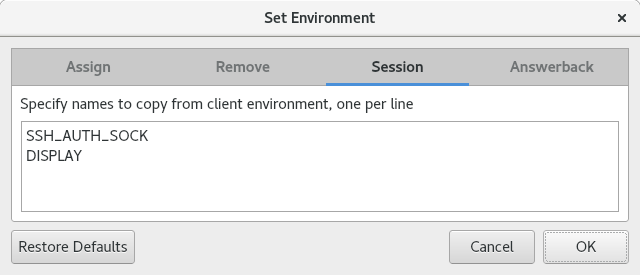 Picture of Environment dialog showing session environment variables